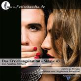Das Erziehungsinstitut - Sklave 43 | Ein BDSM / FemDom Hörbuch